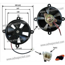 Ventilateur Quad SHINERAY XY200 STII